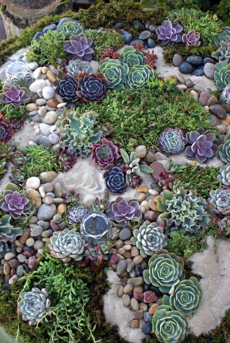 Cacti in a Stone Garden
