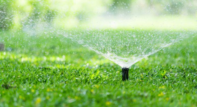Best Lawn Sprinkler Head