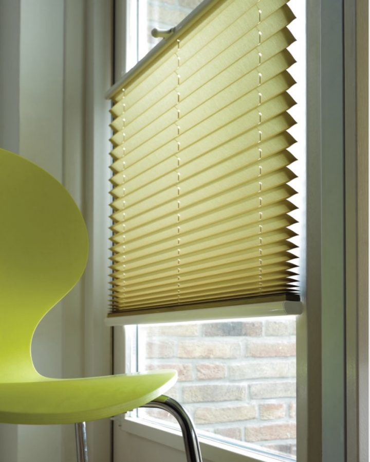 Pleated Shades