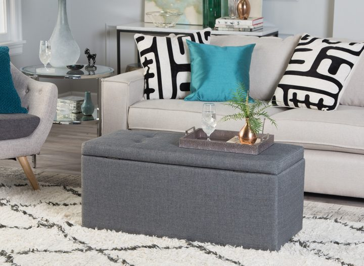 Gray Storage Bench in Front of Sofa
