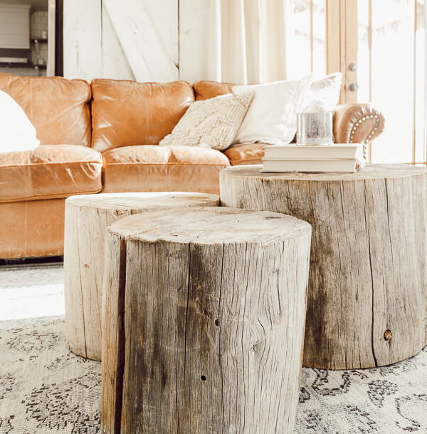 Three Tree Trunks Grouped Together in Front of a Sofa