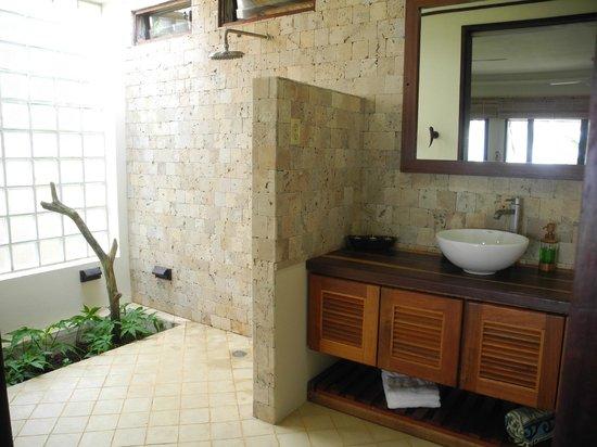 Doorless Shower with Plants