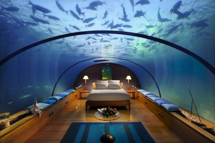 Futuristic Bedroom Idea: Minimalist Bedroom Done in Wood with Underwater-Scenes Projected on the Curved Walls and Ceiling