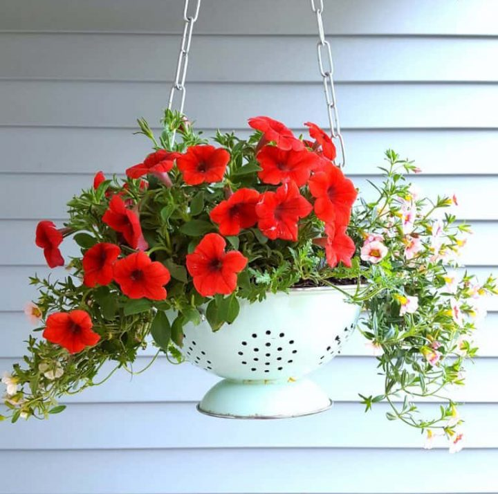 Hanging Planter Made Out of an Old Colander